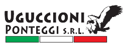 Uguccioni Ponteggi Logo